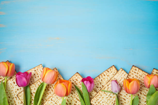 Jewish holiday Passover celebration concept with matzah and tulip flowers on wooden table. Pesah background. stock photo
