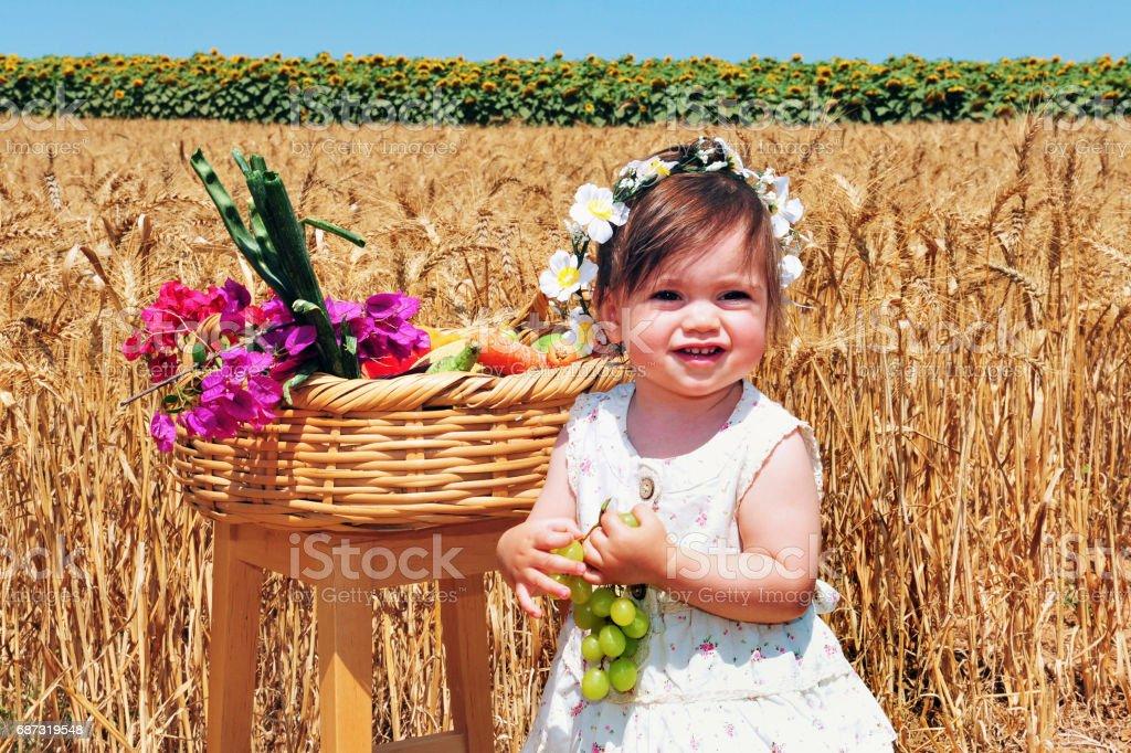 Jewish Holidays - Shavuot stock photo