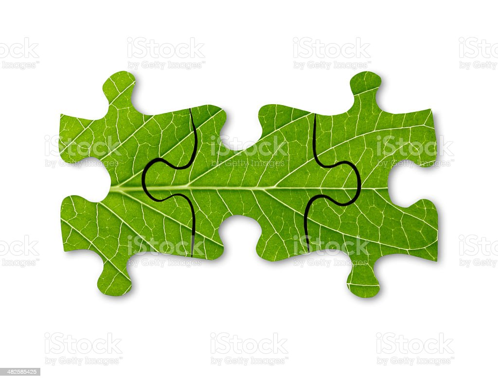 Jigsaw Puzzle-green concepts stock photo