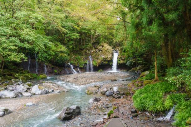 jinba waterfalls, fujinomiya-city - forest bathing foto e immagini stock