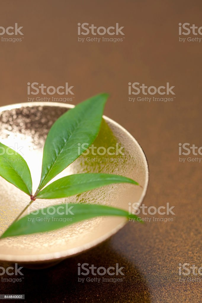 Jinbei and southern leaf stock photo
