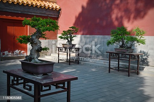 A courtyard in Jingshan Park with small trees in Beijing, China