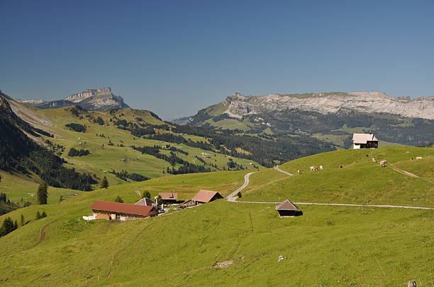 Jänzimatt, Schweiz – Foto