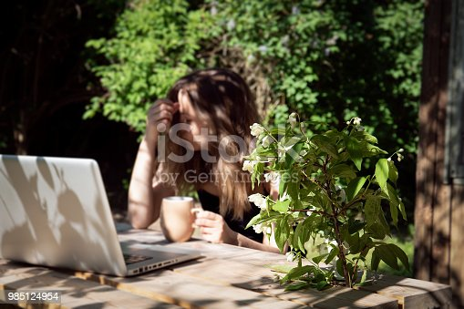istock Job with computer outdoors by wooden table at country, work from home 985124954