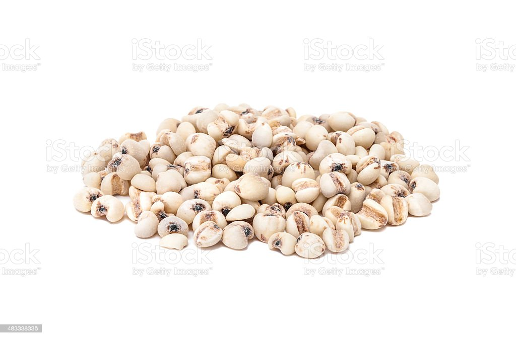 jobs tears grain seed isolated on white background stock photo