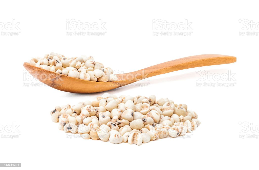 jobs tears grain seed with wooden spoon on white background stock photo