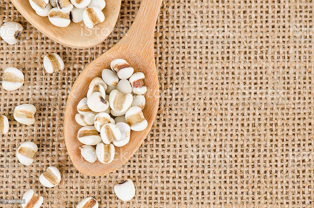 Job's tears with wooden spoon, Millet grains, Organic. stock photo