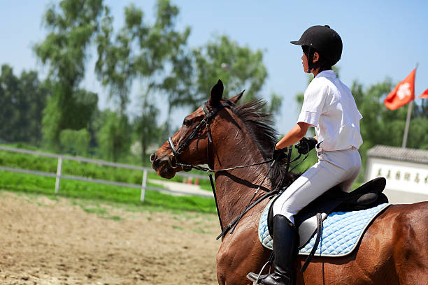 jockey und Pferd im Sommer – Foto