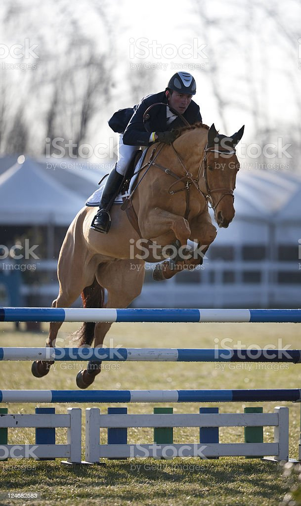 Jockey during a Show Jumping. Color Image stock photo