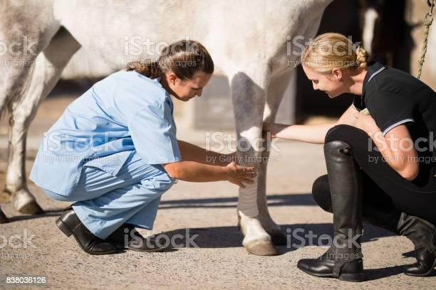 Jockey looking at vet bandaging horse leg picture id838036126?b=1&k=6&m=838036126&s=612x612&h=hdfyy6blepwgwvjxp870oyexdtnqn8jnj9s7ieoqtie=