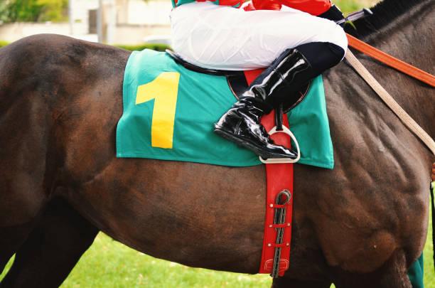 경주마의 기수 - horse racing 뉴스 사진 이미지