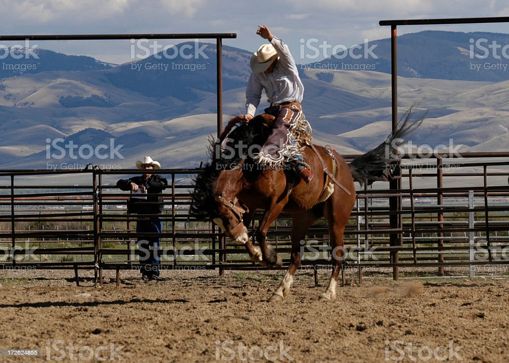 Jockey riding horse, and reaching high into the air stock photo