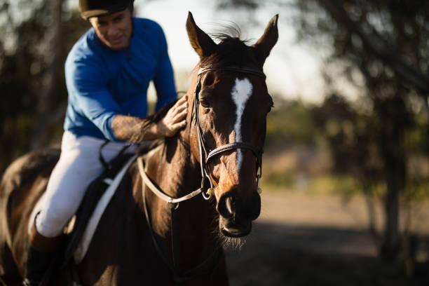 Jockey riding horse at barn picture id838058948?b=1&k=6&m=838058948&s=612x612&w=0&h=5nrwayyuhgnc2rl5md8vebeivifr8kveoncoptqo0 8=