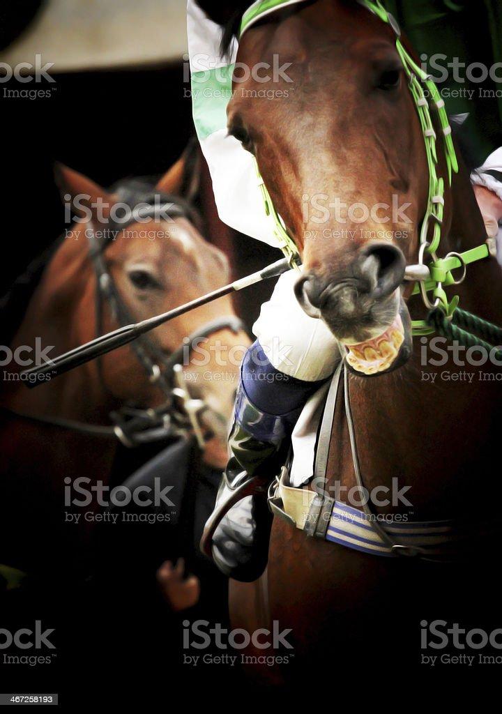 jockey with racehorse stock photo