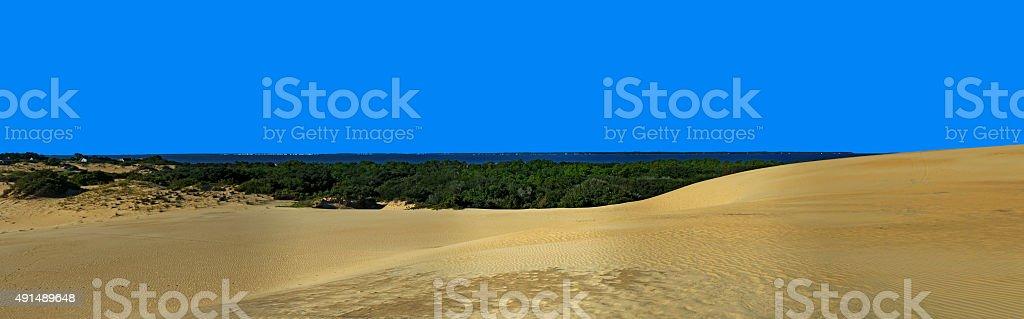Jockey's Ridge and Roanoke Sound Panorama stock photo