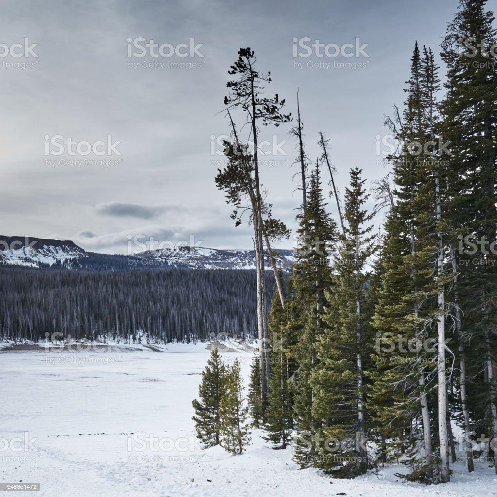Joe Wright Reservoir stock photo