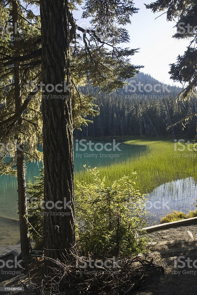 Joffre Lake royalty-free stock photo
