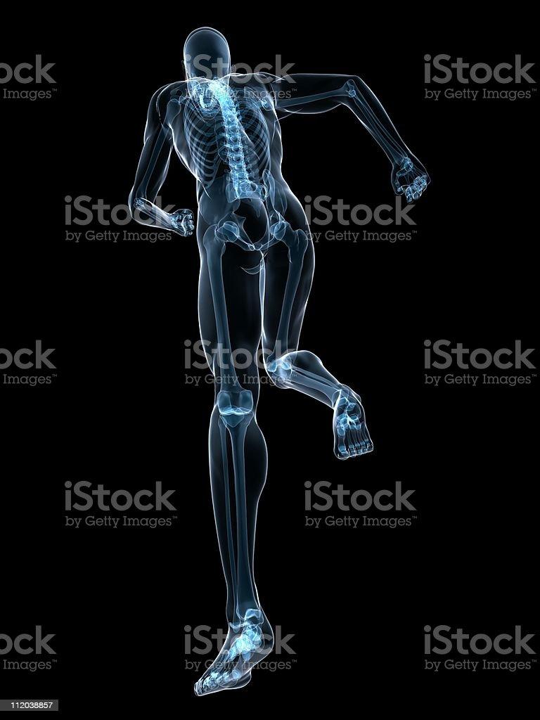 jogger x-ray royalty-free stock photo