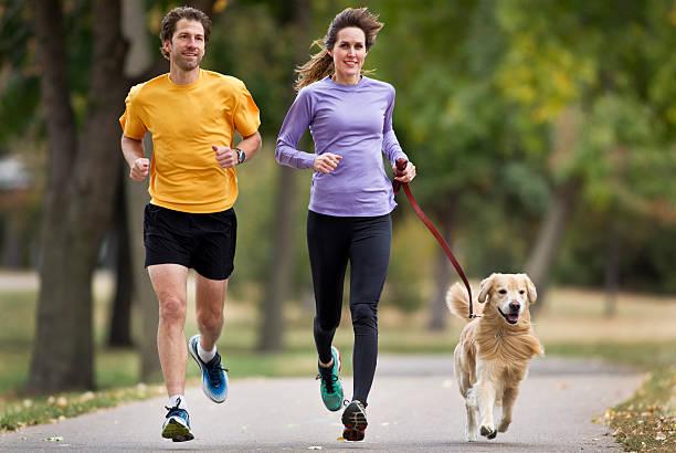 Joggers and golden retriever running on a paved trail picture id164193446?b=1&k=6&m=164193446&s=612x612&w=0&h=zcxke2blg24lq oi7lkk21bj2atmkcccmlhqbt3zpgc=
