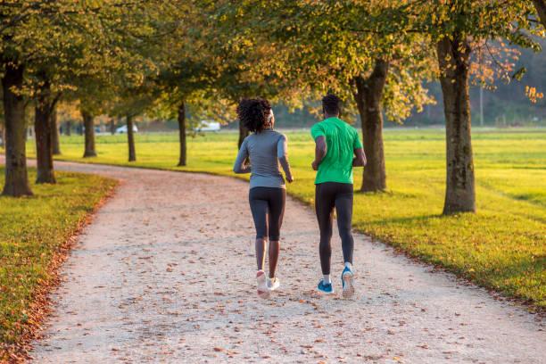 jogger in der natur - baumwipfelpfad stock-fotos und bilder