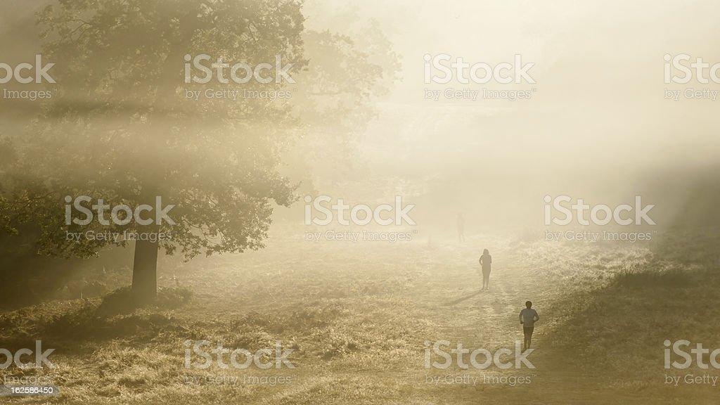 Joggers in Richmond Park London onAutumn morning stock photo