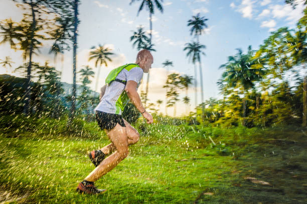 Jogging in the tropical forrest stock photo