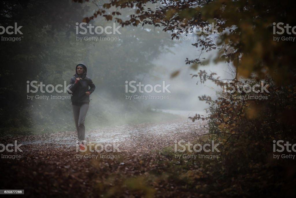 Joggingthrough dark forest foto de stock royalty-free