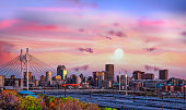 istock Johannesburg city skyline and Nelson Mandela bridge at sunset 1201928833