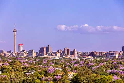 istock Johannesburg cityscape seen from the West 1060937002