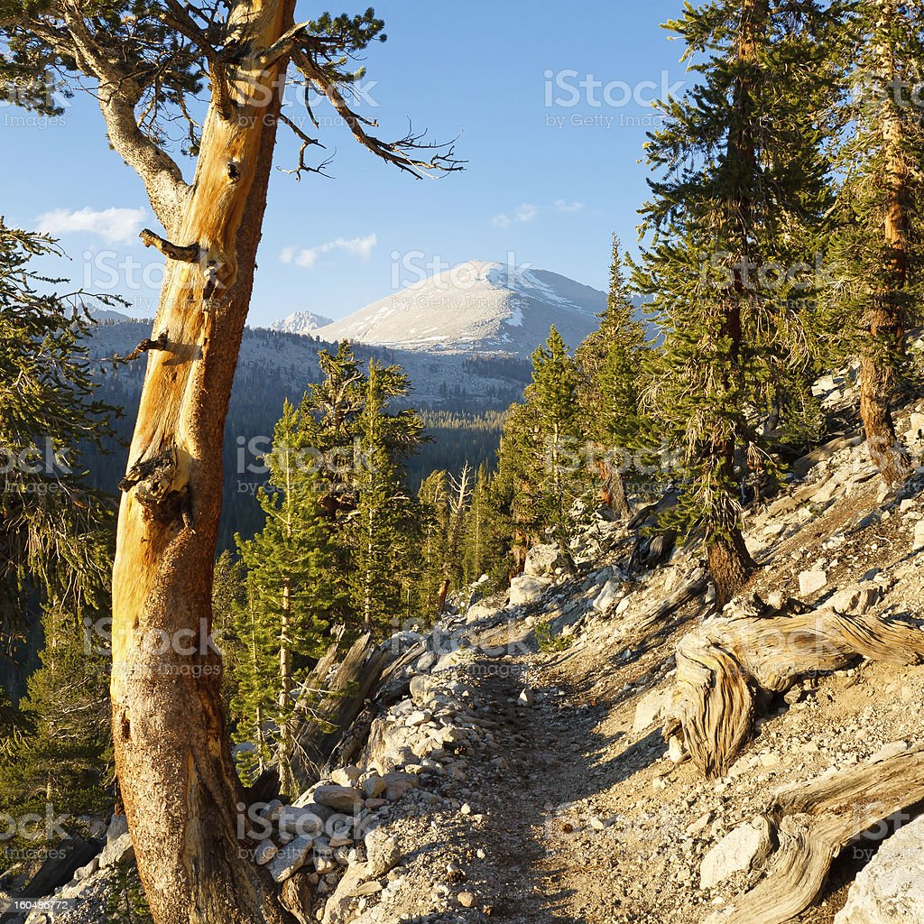 John Muir & Pacific Crest Trail stock photo