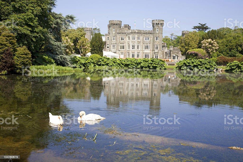 Johnstown Castle Swans stock photo