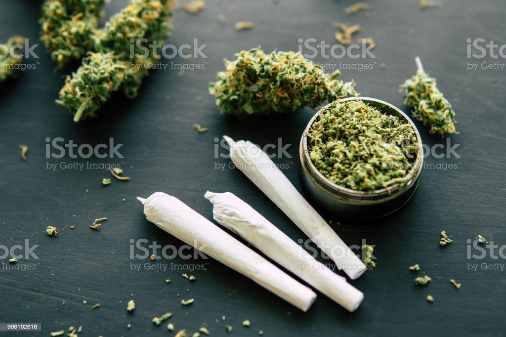 Gemensamma ogräs makro av cannabis knoppar marijuana med trichomes makro skott av cannabis närbild - Royaltyfri Farm Bildbanksbilder