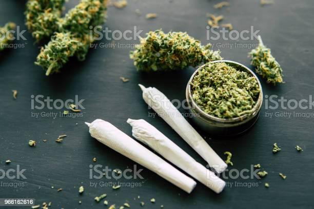 Gemensamma Ogräs Makro Av Cannabis Knoppar Marijuana Med Trichomes Makro Skott Av Cannabis Närbild-foton och fler bilder på Farm