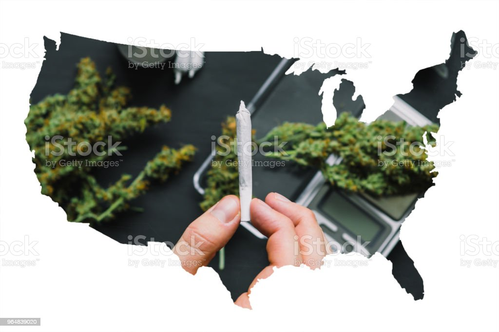 Joint with cannabis marijuana in the hands of a man against the background of the flowers of the package weed royalty-free stock photo