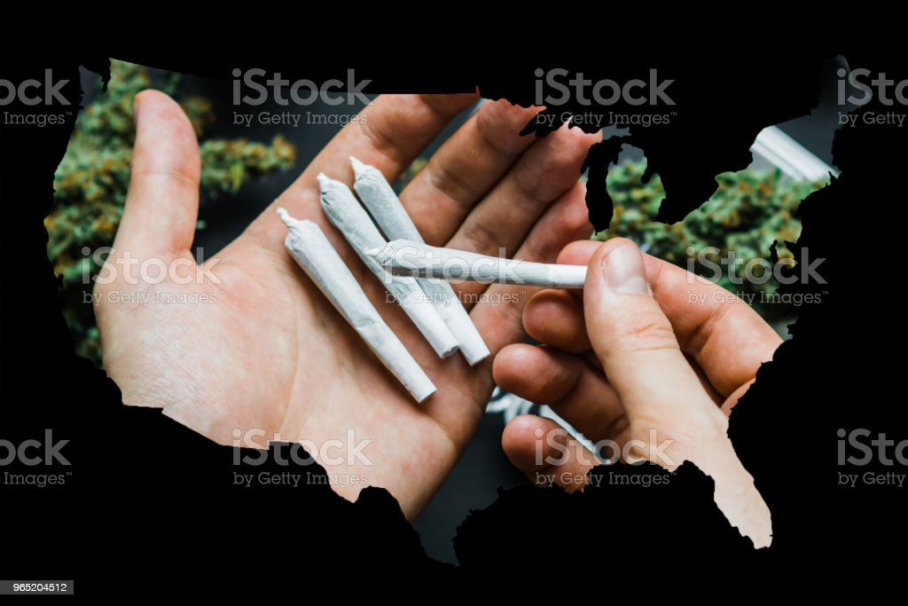 Joint with cannabis marijuana in the hands of a man against the background of the flowers of the package weed zbiór zdjęć royalty-free