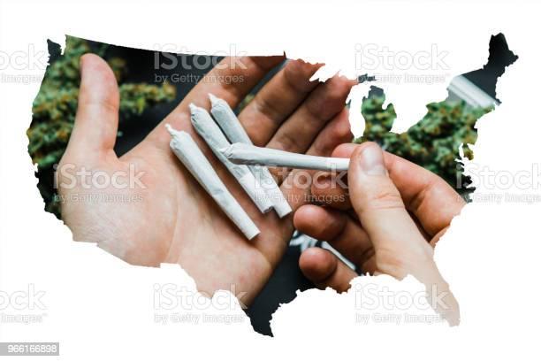 Gemensamma Med Cannabis Marijuana I Händerna På En Man Mot Bakgrund Av Blommorna Av Paketet Ogräs-foton och fler bilder på Farm
