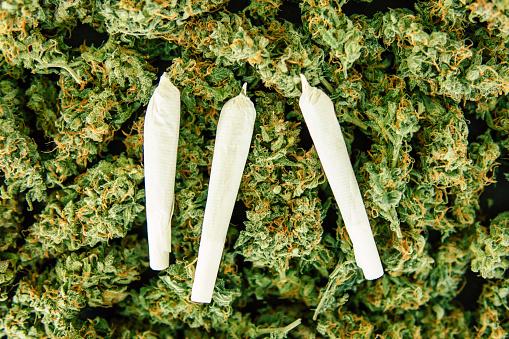 Gewrichten En Achtergrond Van Toppen Cannabis Marihuana Bloem Onkruid Naar Zee Van Groen Onkruid Closeup Stockfoto en meer beelden van Blad