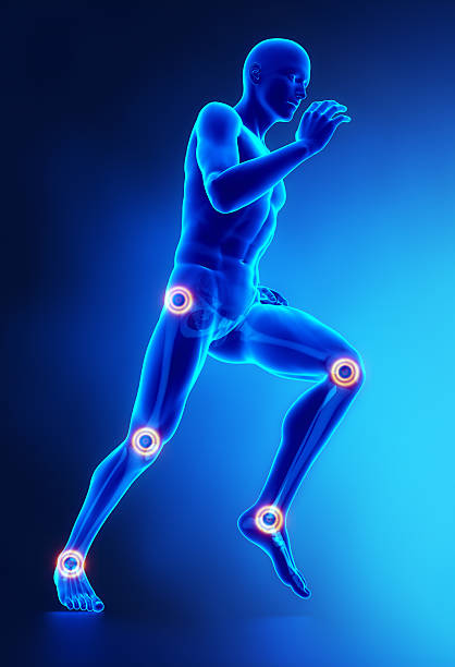 Joints leg injury concept Joints leg injury concept in 3D janulla stock pictures, royalty-free photos & images