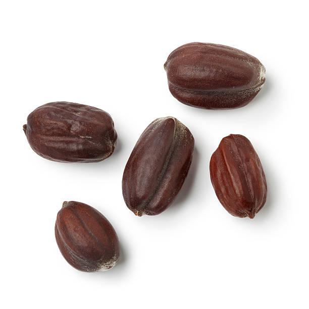 Jojoba seeds stock photo