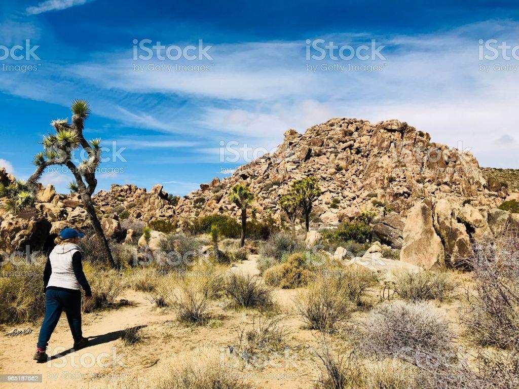 Joshua Tree Hiker royalty-free stock photo