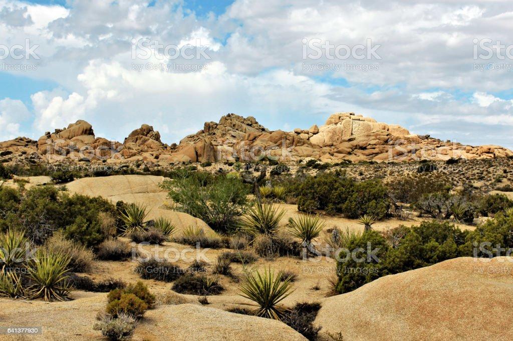 Joshua Tree National Park, Mojave Desert, California stock photo