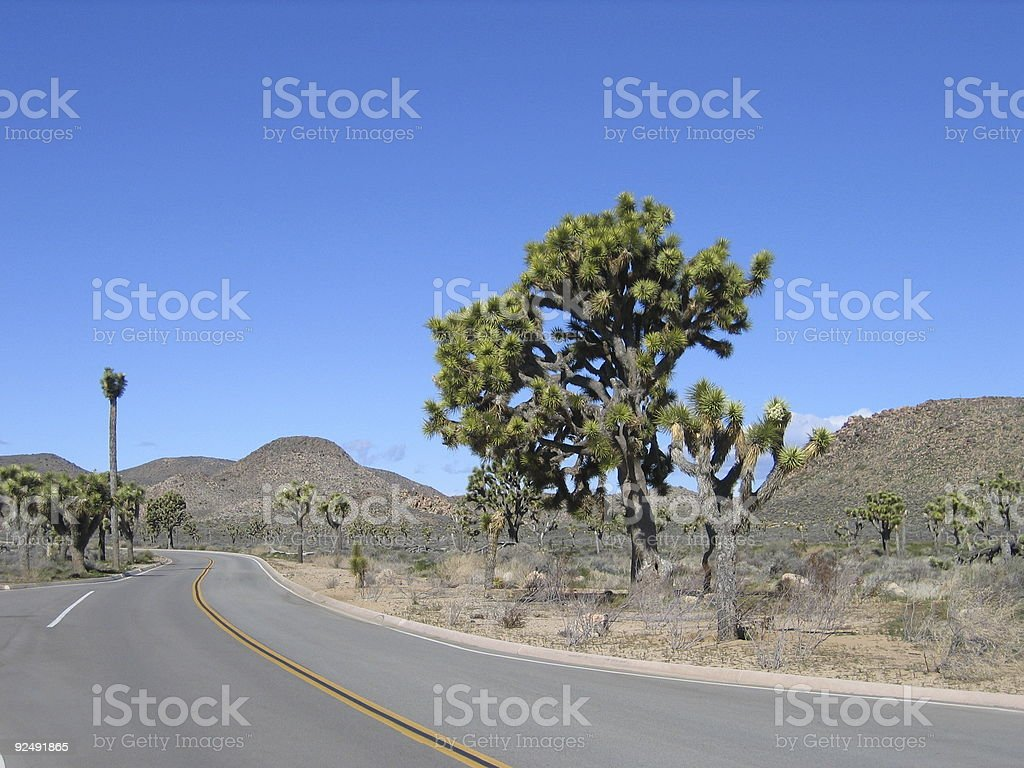 Joshua Tree National Park Road royalty-free stock photo