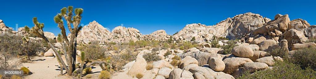 Joshua Tree National Park, USA royalty-free stock photo