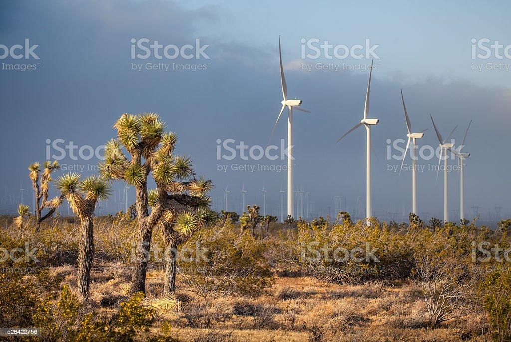 Joshua Trees & Tehachapi Wind Farm As Storm Moves In stock photo