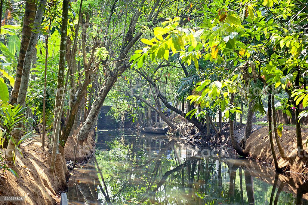 journey through the backwaters of Kerela, India stock photo