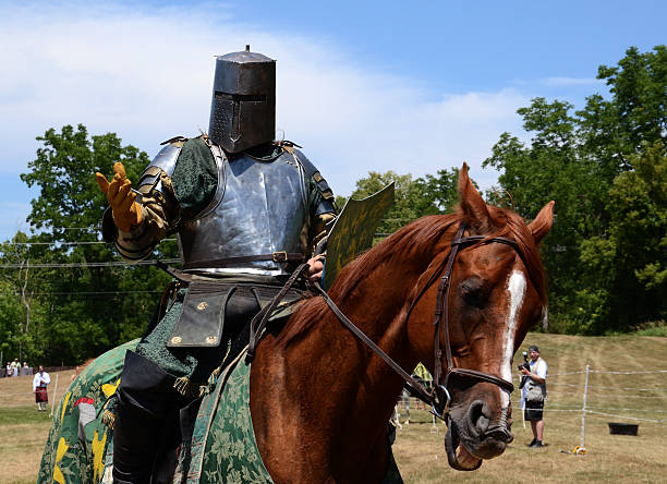 Jouster requesting his sword stock photo