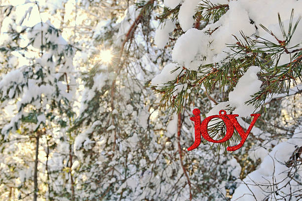 Joy Ornament in a Sunny Winter Forest stock photo