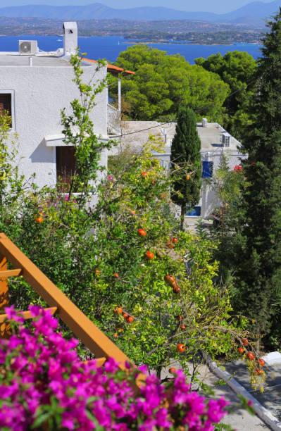 Joy view at Spetses island, Greece – zdjęcie