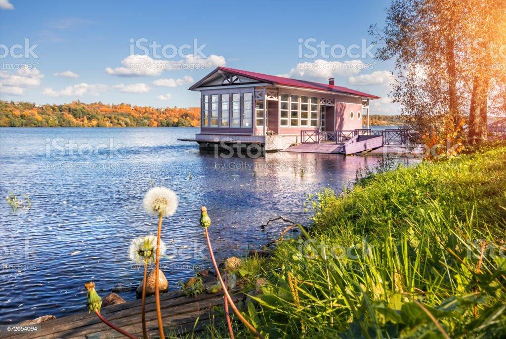 Joyful autumn landscape stock photo