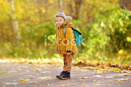 istock Joyful little boy ready for his first day at the preschool or in kindergarten after summer vacation 1158814384